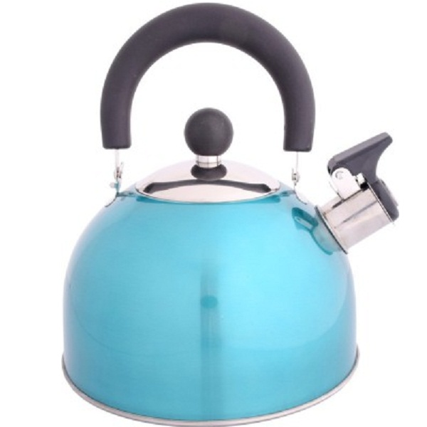 Renberg Whistling Induction Kettle Pot