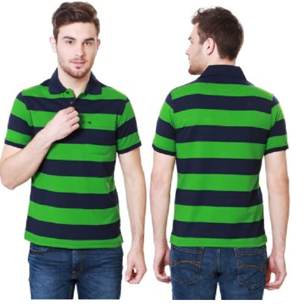 Peter England Striped Mens Polo Neck Green T Shirt