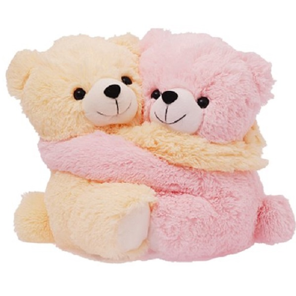 Dimpy Stuff Cute Pink and Cream Bear Couple Soft Toy
