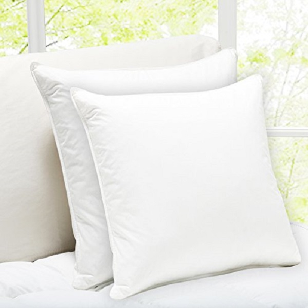Story Home White Micro fibre Cushion Set of 2