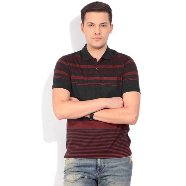 Peter England Striped Mens Polo Neck Red T Shirt