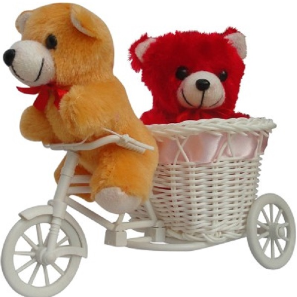 Tiedribbons Gifts with A Beautifull Cycle and 2 Small teddy Valentine Gift Set